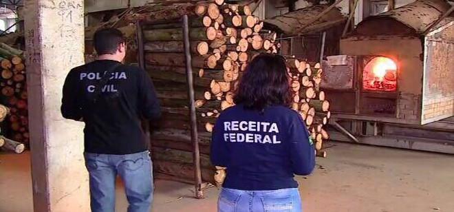 Corporações realizam incineração da segunda maior apreensão de maconha em SC