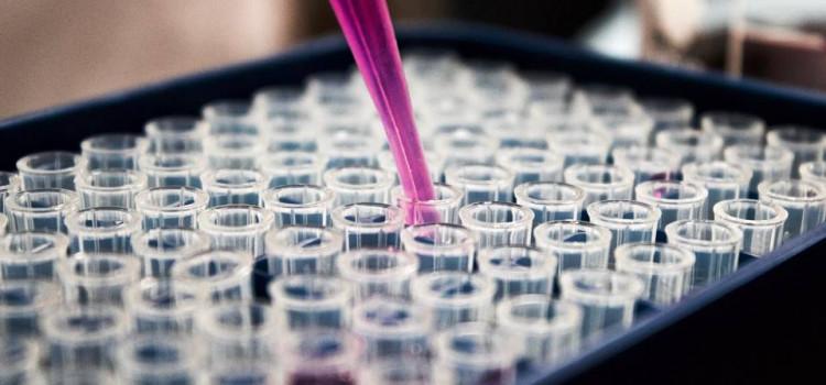 Johnson inicia testes em humanos de vacina contra Covid-19
