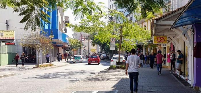 Prefeitura realiza poda de árvores Sete de Setembro e na XV