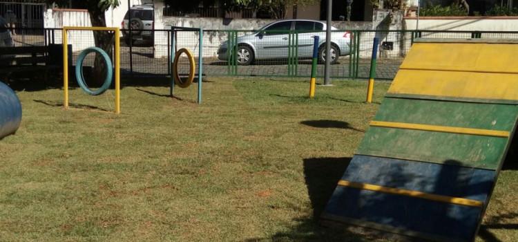 Prefeitura realiza manutenção no Pet Place da Vila Nova