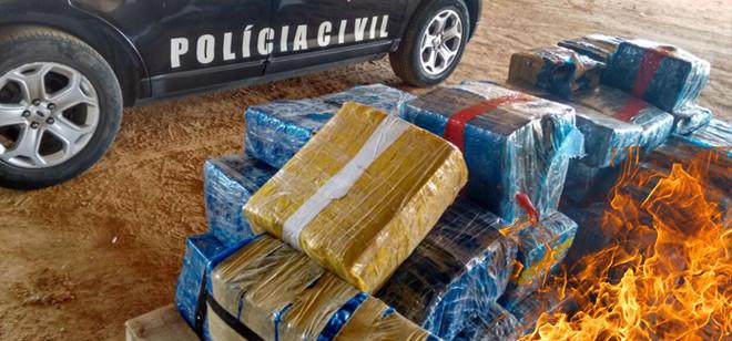 Polícia Civil incinera a maior apreensão de drogas em SC