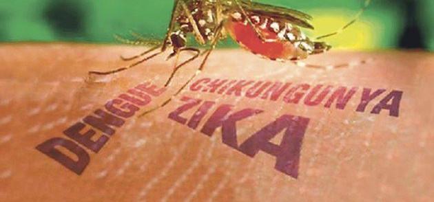 Conheça os novos níveis de ameaça da dengue, chikungunya e zika